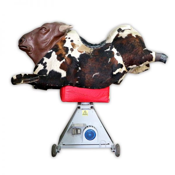 Professional Mechanical Bull