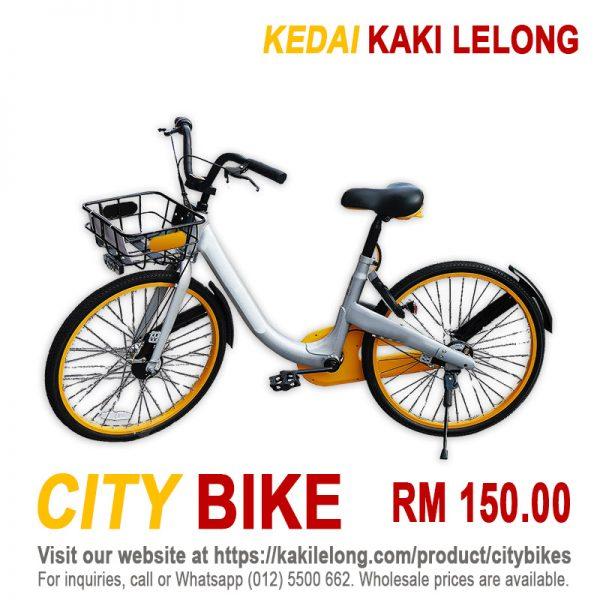 Aluminium City Bike