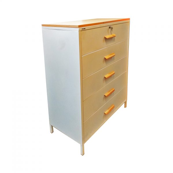 Metal Cupboard with 5 drawers